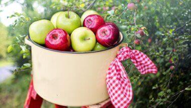 JablkoHraní